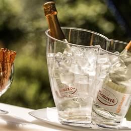Champagne bottles in champagne cooler and salt sticks in detail