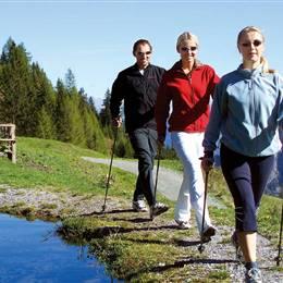 Hiking group wanders from hiking hut towards mountain lake